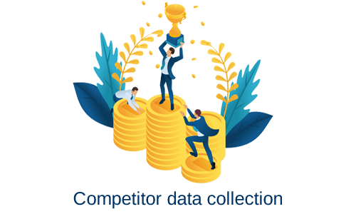 Data Collection Services in India